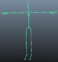 Biped Skeleton, positioned in T-pose